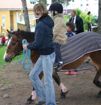 Ett par ponnysar hade kommit