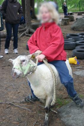 Till och med ett får som man kunde rida på