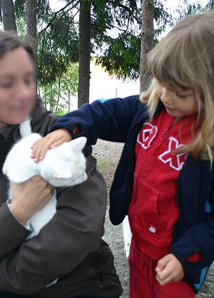 En vit katt som Aliette kelade med